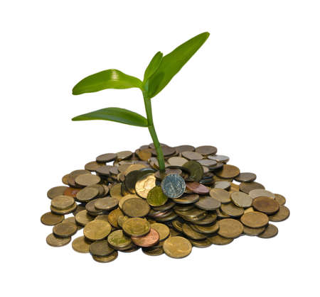 Concept of the money finance
