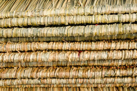 Dry Straw from thailand Stock Photo - 12756459