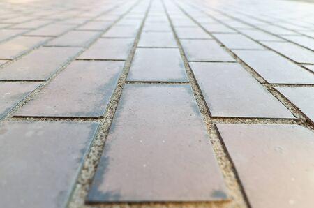 brick floor: Suelo viejo ladrillo marr?n