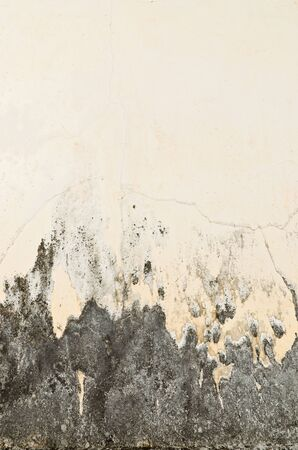 Old rusty wall for background photo