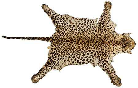 Real leopard hair for  background user photo