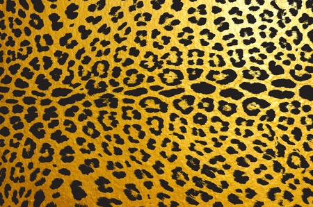 Gold leopard for background photo