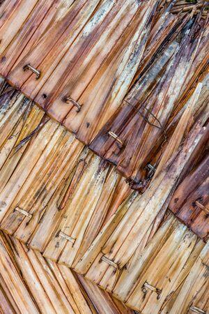 Old rusty coconut leaf closeup