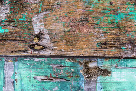 Old rusty color hardwood plank closeup for background use