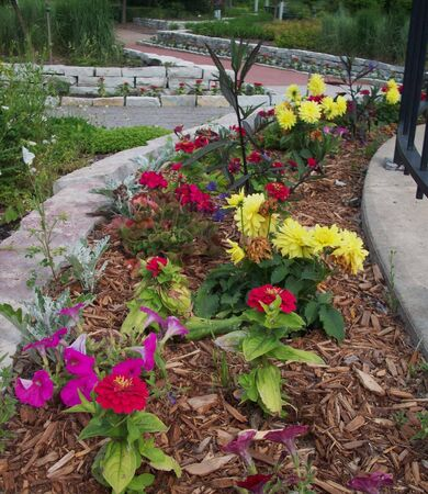 Flowerbed In The Park Stock Photo