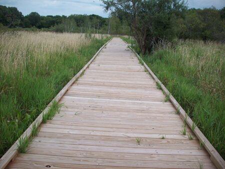 Boardwalk Through Wetland Stock fotó