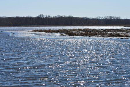 wetland: Wetland Landscape