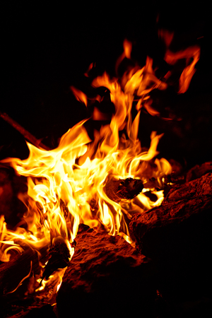 A beautiful flaming flame of burning firewood on a dark background.
