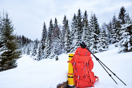 A red backpack in a winter hike against the backdrop of mountains and forests.