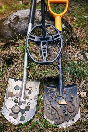 Search for treasure with a metal detector in the forest in the summer.