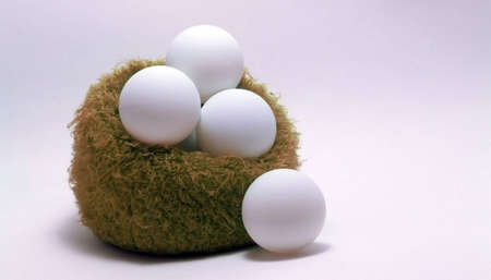 ping pong: Eggs on nest,captured with ping pong. Stock Photo
