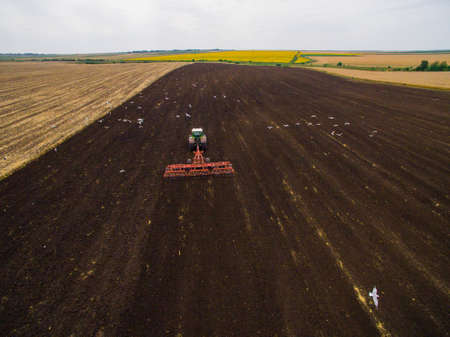 Harvesting in the field. Aerial view. Land cultivation with a tractor