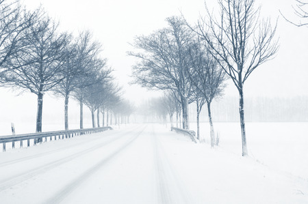 trees services: Snowfall on a country road  - Sudden and heavy snowfall on a country road  Driving on it becomes dangerous Stock Photo