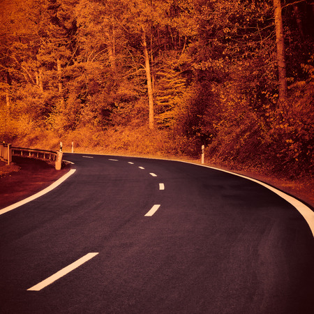 space weather tire: Autumn Road