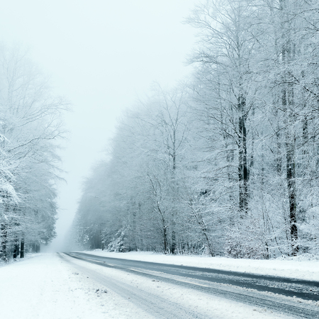 road: Winter Stock Photo