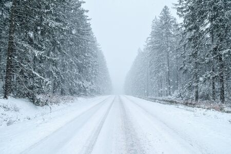 snowfalls: Winter Driving - country road in winter - Snowfall