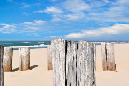 On the Beach by the Sea - wooden breakwaters on a sandy beach on a beautiful day Stok Fotoğraf