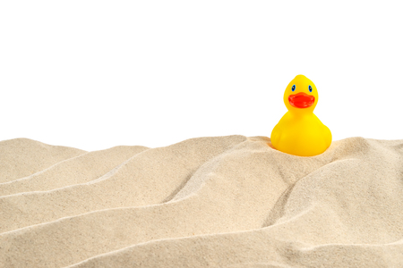 On the beach - sand dune with rubber duck in front of a white background - clipping path included Stok Fotoğraf