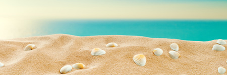 On the beach - sand dune with shells in front of the beautiful sea; Vintage stylized