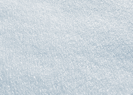Snow Covered - medium close-up of a snowy ground on a bright winter day