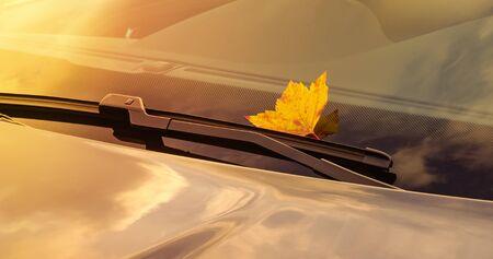 A beautiful autumn leaf, stuck under the windshield wiper of a clean car - copy space Stok Fotoğraf
