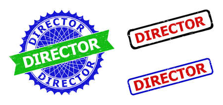 Bicolor DIRECTOR seals. Green and blue DIRECTOR stamp with sharp rosette and ribbon. Rounded rough rectangle framed DIRECTOR seals in red, blue, black colors, with unclean style.