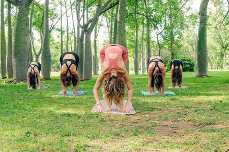 Five women enjoying a yoga session in the park. Padahastasana pose 写真素材