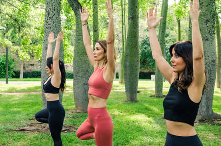Three women enjoying a yoga session in the park. Vrksasana pose 写真素材