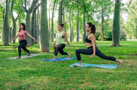 Three young women doing yoga in the park. Virabhadrasana pose between the trees 写真素材