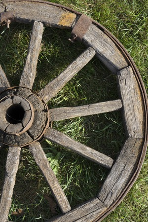 wooden wheel is on a green grass