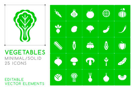Set of 25 Universal Solid Vegetables Icons on Color Background . Isolated Elements