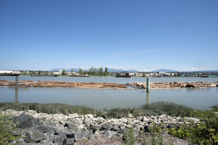 log booms on fraser river Stock Photo