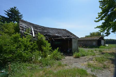 old run down shack
