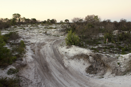 Vehicular damage to a sandy area of Australian bushland being revegitated. Four wheel drive vehicles are at times used for the pure enjoyment of driving but this often have a significant impact on less stable soils.