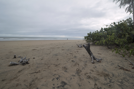 A woman walking in the distance on an uncrowded beach in Queenslands Eurimbula National Park on an overcast day. Stock Photo