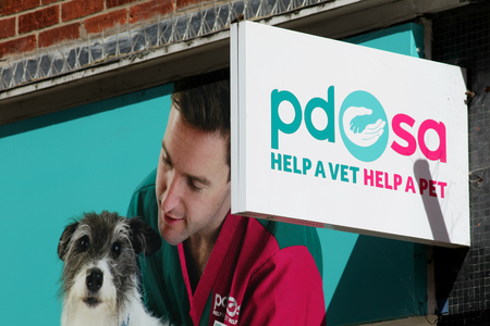 shop sign: PDSA charity shop sign, Colchester, Essex