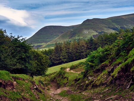 Medieval Highway - Black Mountains Wales UK. An ancient track way or hollow that was once a highway to horses and carts now part of a bridleway known as the Three Rivers Ride.