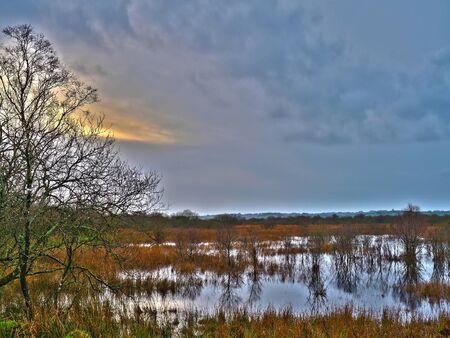 Cors Carnon Nature Reserve - Tregaron Bog!
