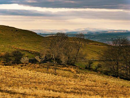 Cader Idris from Waun Maenllwyd