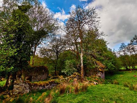 Ruins of Welsh Farm Homestead