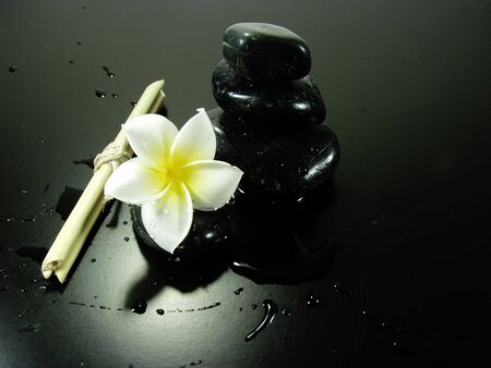 japanese zen composition whit white flower and black stones Stock Photo