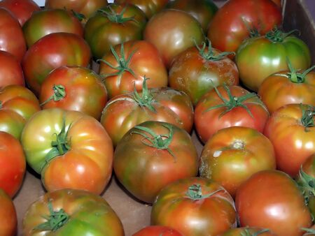 red canary: a box of red canary tomatoes in the fruit shop Stock Photo