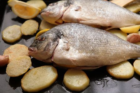 Gilthead Bream fish with potato slices in a oven tray for cook photo