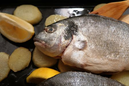 gilthead bream: Gilthead Bream fish with potato slices in a oven tray for cook