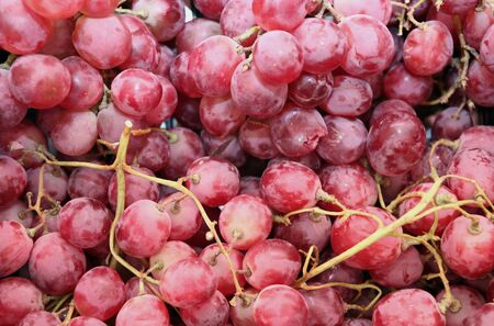 Cluster of ripe juicy red grapes with large berries Stock Photo - 846925