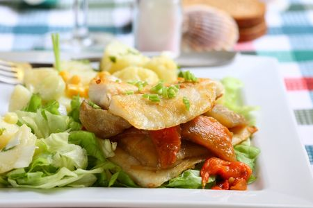 Grilled hake filet with roast pepper and aubergine on lettuce and potato salad Stock Photo - 934180