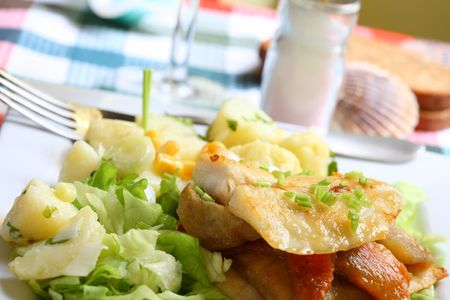 Grilled hake filet with roast pepper and aubergine on lettuce and potato salad Stock Photo - 934182