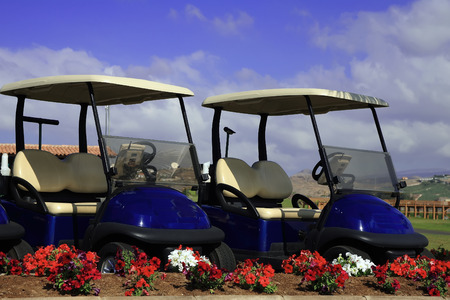 golf cart: blue golf cars parked near club house