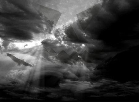 drakula: bat flying in dark and cloudy  sky
