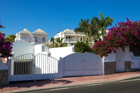 single dwelling: New residential houses with bouganvilles flower and palms